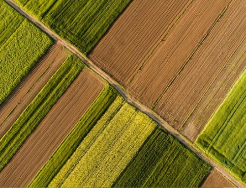 Το Μηνιαίο Ενημερωτικό Δελτίο Τιμών Αγροτικών Προϊόντων από την Τράπεζα Πειραιώς