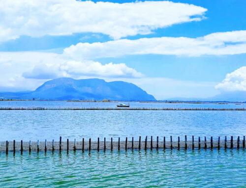 «Κλειδώνει» τα 20.000.000 ευρώ για τη λιμνοθάλασσα Μεσολογγίου – Αιτωλικού ο Φαρμάκης.